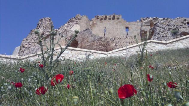 XII.Yüzyıldan XVI.Yüzyılın başlarına kadar çeşitli beylik ve devletlerce (Selçuklu,Artuklu,Eyyübi,Memluk) kullanılan Ravanda Kalesi 1516 yılından sonra Osmanlı İmparatorluğu'nun eline geçti.
