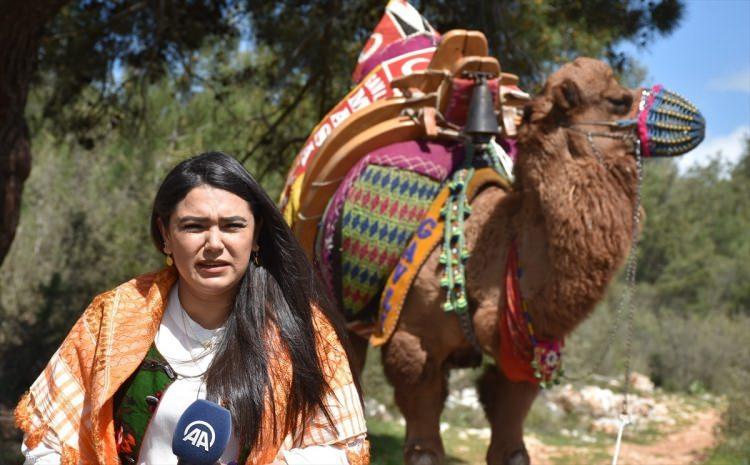 Bodrum'un kadın devecileri şaşırtıyor