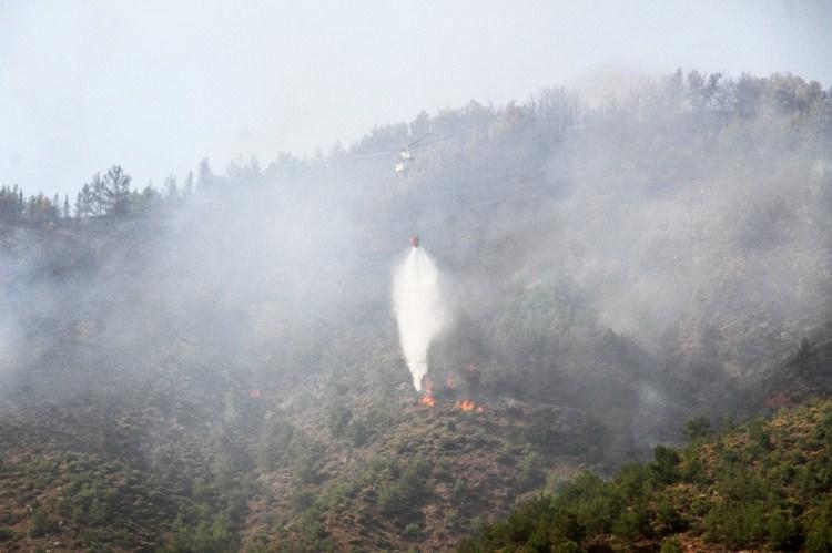 <p>Edinilen bilgiye göre; saat 15.00 sıralarında Fethiye'nin Karaçulha Mahallesi'nde bulunan Muğla Büyükşehir Belediyesi Sebze Meyve Toptancı Hali arkasındaki ormanlık alanda henüz belirlenemeyen bir nedenle yangın çıktı.</p>  <p></p>