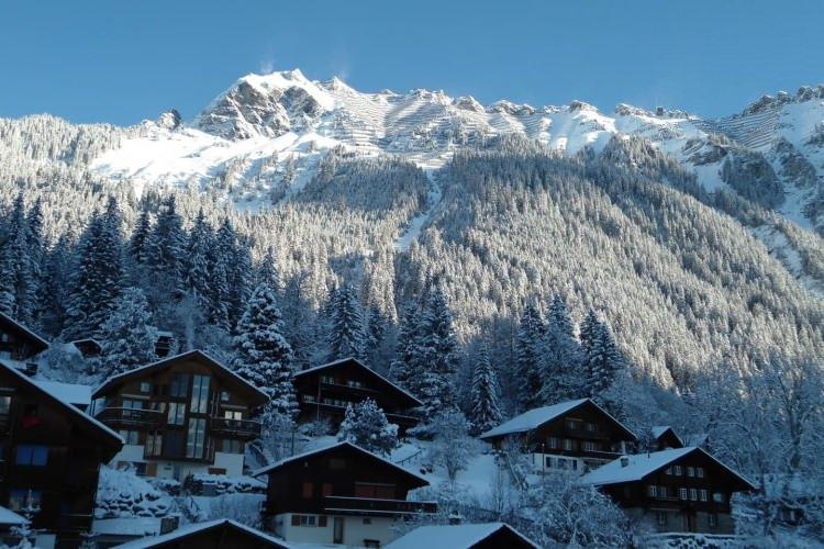 <p>Wengen'de helal dostu bir oteldekalarak Jungfrau Kayak bölgesinde, 19 teleferikle ulaşabileceğiniz 33 bireysel pist ile 112 km'lik yokuş aşağı kayma deneyimini yaşayabilirsiniz.</p>