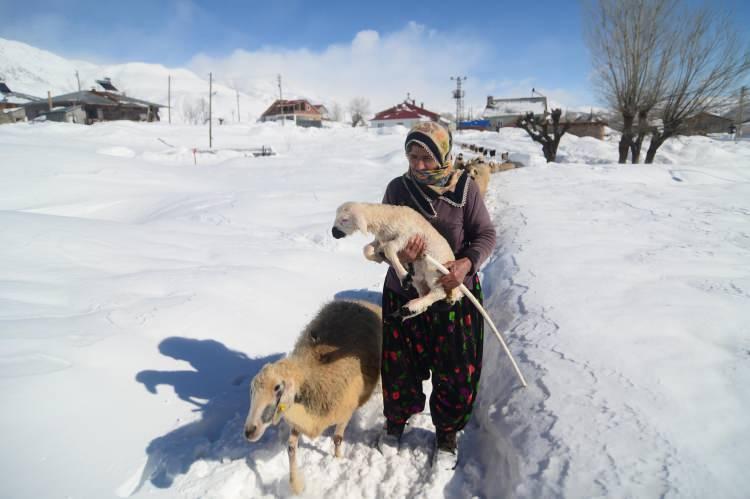 <p>Mercan ve Munzur dağları eteğindeki Paşadüzü, Gözeler, Yarımkaya, Mollaaliler ve Havuzlu köyünde yaşayan besiciler, günün büyük bölümünü hayvanlarını beslemekle geçiriyor. Yazın 4 ay boyunca hayvanlarını yaylalarda otlatan besiciler, kış mevsiminde de kar, tipi ve dondurucu soğuklara rağmen geçim kaynağı olan hayvanlarının bakımını aksatmamak için yoğun mesai harcıyor.</p>
