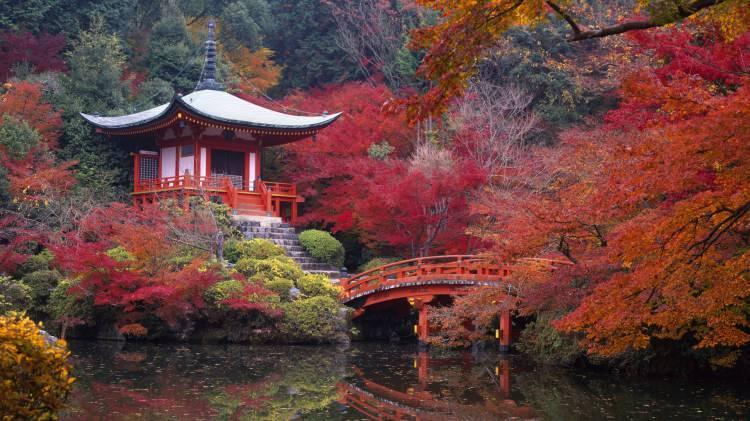 <p>24- KYOTO / JAPONYA</p>  <p>Kyoto tapınakları modern yaşamla antik geçmiş arasında nadir bir bağlantı sağlar. Örneğin, Shimogamo Mabedi'nin geçmişi 6. yüzyıla uzanmakta ve zamanı durdurmuş gibi görünmektedir. Sakinliği ve ruhsal gücü hala aşikar. Shinto pirinç tanrısına ibadet edilen Fushimi Inari Mabedi görebilir, ardından Sanjüsangen-do'nungerçeğe uygun boyuttaki Bin Silahlı Adam heykellerini ziyaret edebilirsiniz. Geleneksel geyşa gösterilerinin keyfini çıkarabilir, ardından Kamo Nehri'ne bakan bir restoranda rahat bir yemek yiyebilirsiniz.</p>