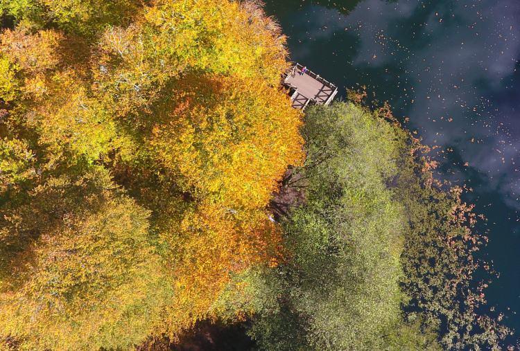 """<p>""""Orman denizi"""" olarak adlandırılan Yedigöller Milli Parkı ile """"tabiatın kalbi"""" olarak nitelendirilen Gölcük Tabiat Parkı'nda sonbaharın büyüleyen güzellikleri yaşanıyor.<br /> Yüzde 65'i ormanlarla kaplı Bolu'nun doğal güzellikleriyle ünlü Yedigöller Milli Parkı ve Gölcük Tabiat Parkı, sonbaharla başka bir güzelliğe büründü.</p>"""