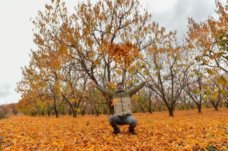 <p>Bursalı fotoğraf sanatçısı Şaban Kılıçcı ise hayranlık oluşturan doğadaki renk cümbüşü ile doğal güzellikleri fotoğrafladı.</p>