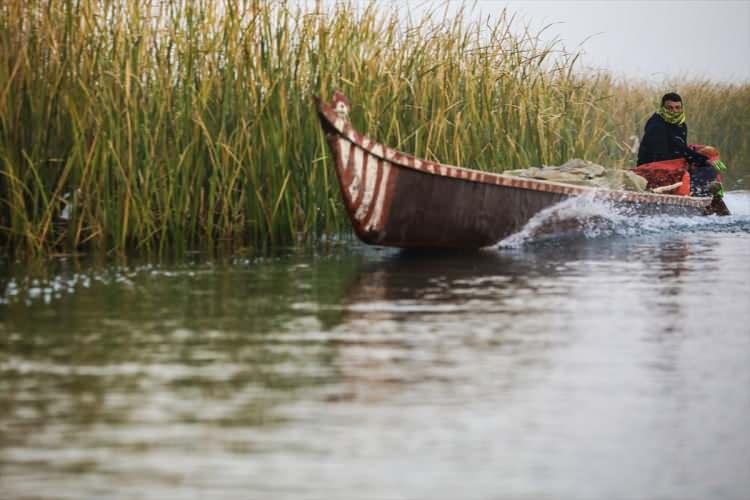 <p>Irak'ın İran sınırında bulunan, Orta Doğu'nun en büyük bataklığı, Saddam rejimi tarafından savaş yıllarında kurutulma politikasına tabi tutuldu. Nüfusun büyük bölümü göç etmek zorunda bırakılırken, geride kalan halk geçimini tarım, hayvancılık ve balıkçılıkla sağlıyor.</p>