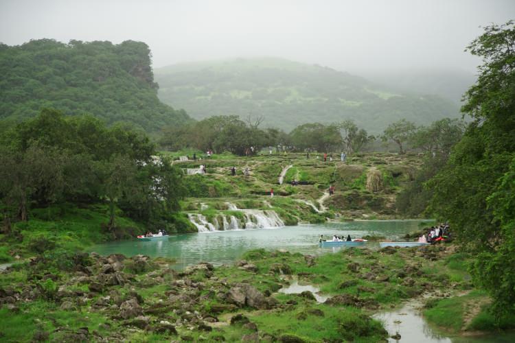 <p>Çevre alanında çalışmaları bulunan Muhammed eş-Şenferi de kentin zengin bitki türlerinin de ilgi çeken yanlarından olduğunu ifade etti.</p>