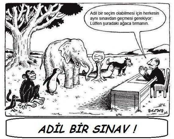 En Komik Sınav Karikatürleri Resim 1
