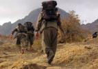 Terör destekçisi NATO üyeleri