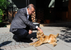 Fotoğraflarla 'Cumhurbaşkanı Erdoğan'