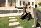 Iraklı hayvansever evinde beslediği aslanı çocuklarından ayrı tutmuyor