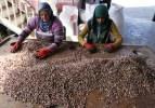 Türkiye'den 10 ayda 93 ülkeye Antep fıstığı ihraç edildi