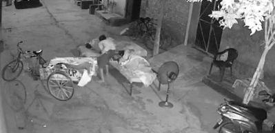 Ailesinin yanında uyuyan çocuğu kaçırmaya çalıştı