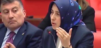 AK Parti Grup Başkanvekili Özlem Zengin'den CHP'li Engin Özkoç'a sert tepki