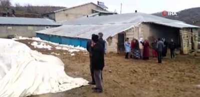 Bingöl'de heyelanda ahır çöktü, 8 inek telef oldu