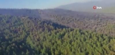 Bodrum'da yangın kontrol altında, Milas'ta çalışmalar devam ediyor