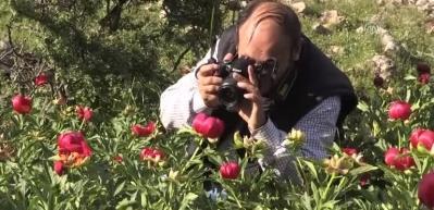 Bu çiçeği koparmanın cezası 48 bin 600 lira...