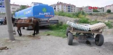 Çaldıkları at arabasıyla, kalorifer peteği çalmak istediler