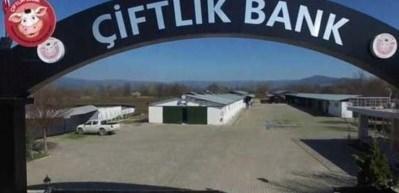 Çiftlik Bank Tesisi görüntülendi