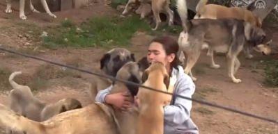 Emekli maaşını sokak köpekleri için harcıyor
