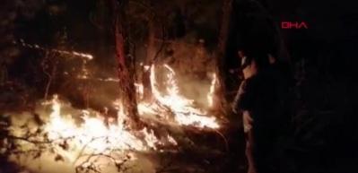 Eskişehir'de yangın! Söndürme çalışmaları sürüyor