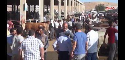 Hayvan pazarında yer kavgası: 14 yaralı