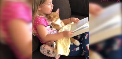 Kedisine kitap okuyan sevimli kız