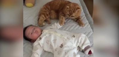 Kediyle bebeğin bu görüntüsü gülümsetti