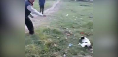 Köpeğe taş yağdıran yaşlı adam tepki topladı!