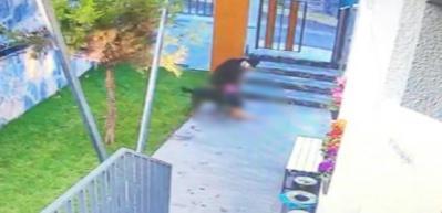 Köpeğinin kediyi parçalamasını izleyip ölünce çöpe attı!