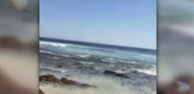 Köpekbalığı sörfçüye böyle saldırdı