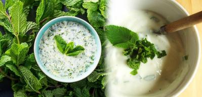 Naneli yoğurt ile zayıflama kürü! Nane yoğurt mucizesi nedir? Naneli yoğurt nasıl yapılır?