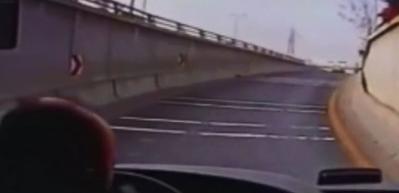 Otobüsü durdurup kediyi hayata döndürdü! Şoförden insanlık dersi...