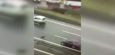 Otoyolun ortasında kalan köpeği böyle kurtardılar