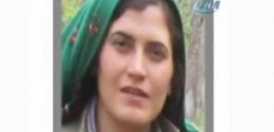 PKK'ya soğuk duş! Bingöl'de öldürüldü