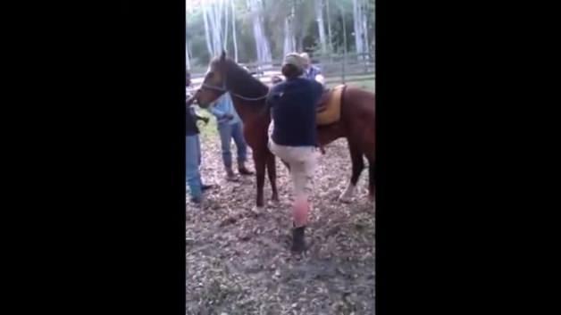 Atın çiftesini yiyen adamın dünyası karardı