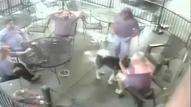 Köpek kadının yüzünü böyle parçaladı!