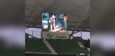 Sakaryaspor - Amedspor maçına damga vuran görüntüler
