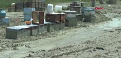 Selde 690 kovan zarar gördü, arılar telef oldu