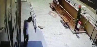 Silahla vurulan yaralı köpek aile hekimliğine sığındı