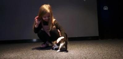 Sinema salonunda bulunan kedi çocukların ilgi odağı oldu