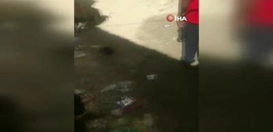 Somali'de şehre inen domuz böyle öldürüldü