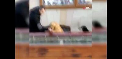 Susayan köpeğe elleriyle su içirdi