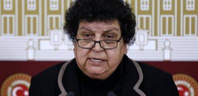 Teröristlere 'çocuklarımız' leşlerine 'şehit' diyen CHP'li: Şenal Sarıhan