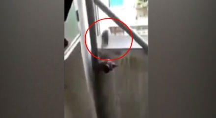 Fare böyle intihar etti! - Video 7