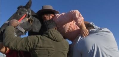 Ülke TV sunucusu Harun Şen'in İngiliz atıyla imtihanı
