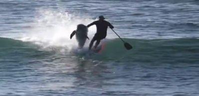 Yunus, sörfçüyü böyle devirdi