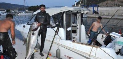 Zıpkınla 51 kiloluk akya avladı
