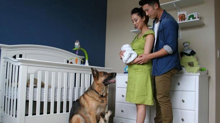 90 saniyede 9 aylık hamilelik yolculuğu