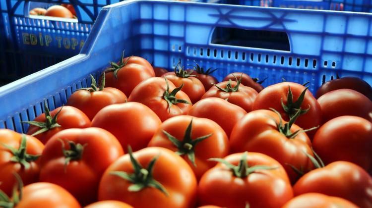 Meyve - sebze fiyatları için devrim gibi uygulama