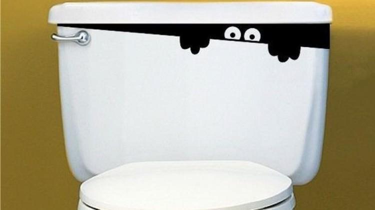 Çin'de 'tuvalet' devrimi